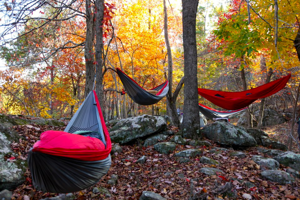 the to around dsc thicket camping compressed camp with hammock a how