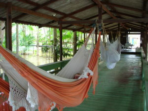 Several Hammocks